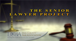 Senior Lawyer Project